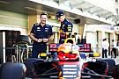 A Red Bull szerint az Alfa Romeo-Sauber egy