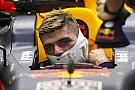 Ферстаппен: McLaren и Renault нам не соперники