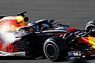 Webber: Ricciardo sadece kendisine konsantre olmalı