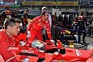 A Red Bull szerint Vettel egyszerűen begőzölt Hamilton miatt