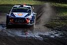 WRC Polonya WRC: Neuville bu sene 3. zaferini kazandı!