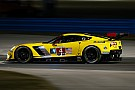 Corvette stars wary of rookie endurance drivers at Rolex 24