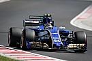 Wehrlein'ın F1'deki geleceği tehlikede