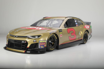 Richard Childress Racing Austin Dillon paint scheme