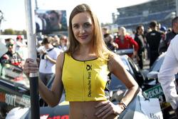 Grid girl of René Rast, Audi Sport Team Rosberg, Audi RS 5 DTM