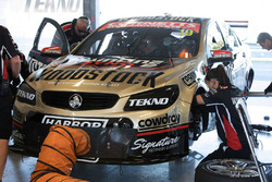 Car of Will Davison, Tekno Autosports Holden