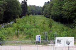 Los árboles en crecimiento que cubren el viejo circuito. Tenga en cuenta la estatua de Jim Clark, que murió en Hockenheim en 1968. Se ha movido desde su ubicación anterior en el circuito a principios de año.