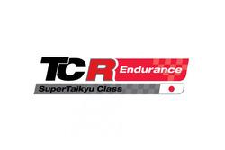 Il nuovo logo TCR-Super Taikyu Series