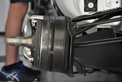 Williams FW40 front brake detail