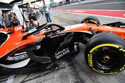 Fernando Alonso, McLaren MCL32 avec le Halo