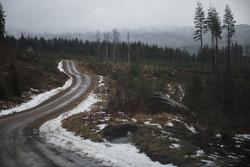 Parte de la ruta del rally