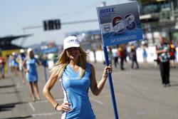 Grid girl of Nicky Catsburg, Polestar Cyan Racing, Volvo S60 Polestar TC1