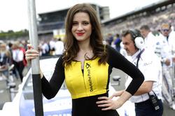 Grid girl of  of Maxime Martin, BMW Team RBM, BMW M4 DTM