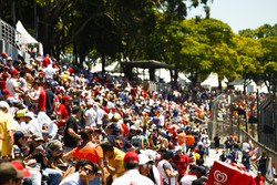 Fans gather in the grandstand