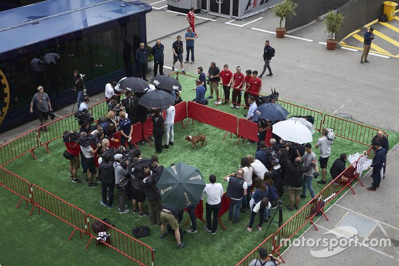 Lewis Hamilton, Mercedes AMG F1, y su perro Roscoe con los medios