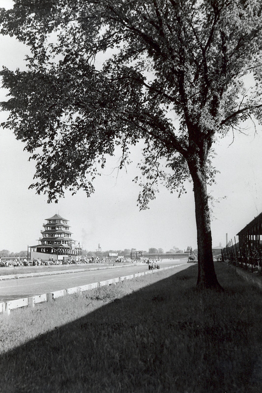 Árbol y Torre de la pagoda