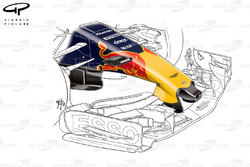 Red Bull RB13 nose