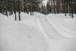 Rally Sweden atmosphere