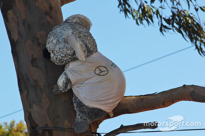 A Mercedes AMG F1 koala bear