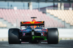 Max Verstappen, Red Bull Racing RB13 met flow-vis verf