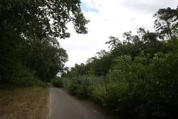 Un carril bici va cerca del trazado del viejo circuito