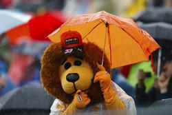 Fan van Max Verstappen, Red Bull Racing
