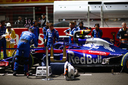 Toro Rosso engineers on the grid with the car of Pierre Gasly, Toro Rosso STR13