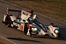 Muscle Milk Pickett Racing Sebring race report