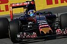 """Pilotos da Toro Rosso estão ansiosos para correr """"no quintal de casa"""""""