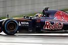 В Toro Rosso готовы принять предложение Ferrari
