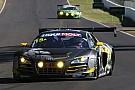 David Reynolds, Alex Davison lock down Bathurst drives