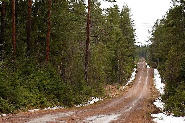 Die Rallye Schweden findet statt!