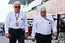 Blash legt FIA-functie na 2016 neer
