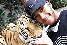 Lewis Hamilton asusta a un tigre
