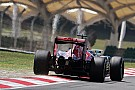 Tech update: Toro Rosso past achtervleugel aan om B-spec te optimaliseren