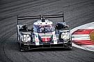 Porsche: Webber-Nachfolger