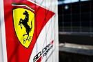 Ferrari evaluó a cinco jóvenes, incluidos Enzo Fittipaldi y el español Vidales