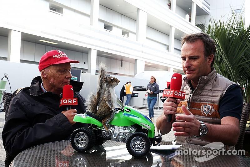 Животные, которые смотрели гонки вместе с нами