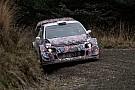 Meeke: In der WRC 2017 wird es keine