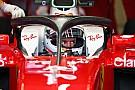 Formel 1 Sebastian Vettel: F1 2018 ohne Halo wäre