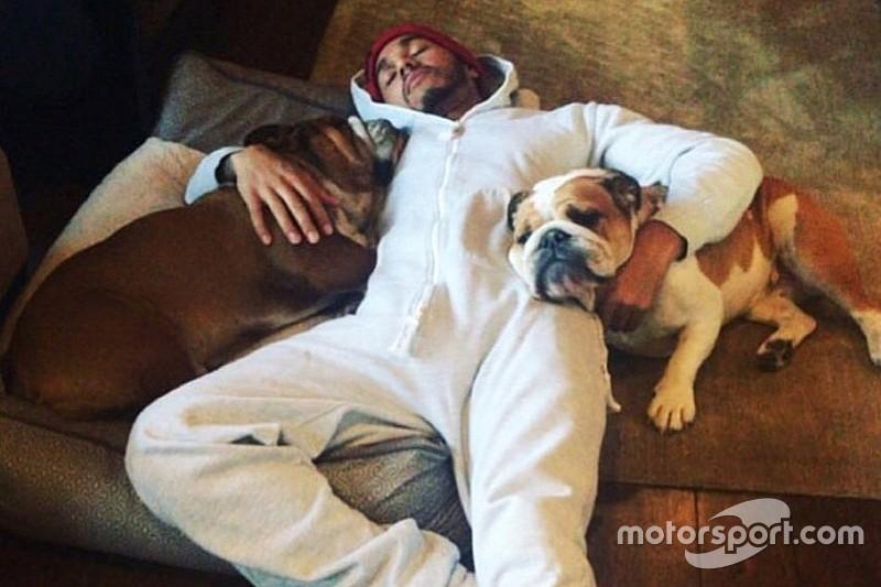 Navidad, entrenamientos y perros: cómo pasan sus vacaciones los pilotos de F1