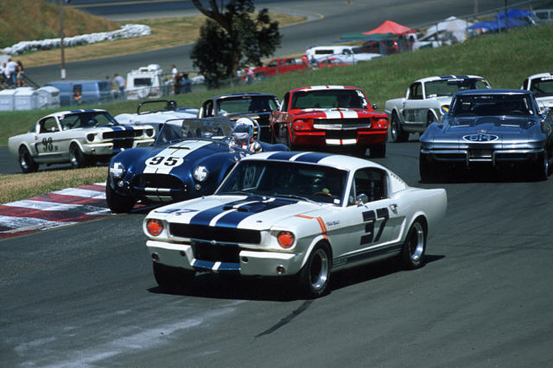 Mostly Mustangs