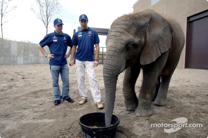Visita al Zoológico de Indianapolis: Nick Heidfeld y Heinz-Harald Frentzen