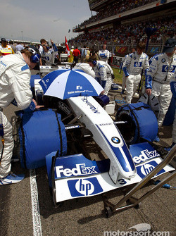 Williams-BMW team members on the starting grid