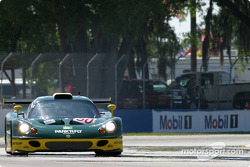 La Lotus Elise n°50 du Team Elite (Jay Cochran, Ed Zabinski, Damion Faulkner)