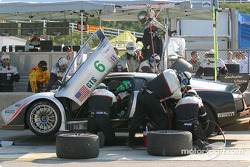 Arrêt aux stands pour la Lamborghini Murcielago R-GT n°6 Krohn-Barbour Racing : Tracy Krohn, Scott Maxwell, Joe Fox