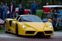 Ferrari Enzo використовує регульовану висоту, щоб з'їхати з газону
