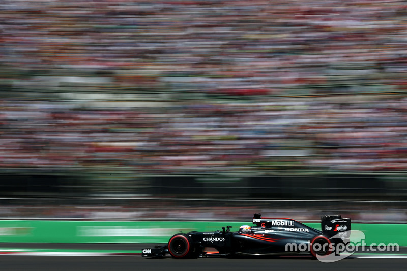 11: Fernando Alonso, McLaren MP4-31