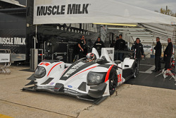 #6 Muscle Milk Pickett Racing HPD ARX-03a: Greg Pickett