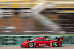 #99 GAINSCO/Bob Stallings Racing Chevrolet Corvette DP: Jon Fogarty, Alex Gurney